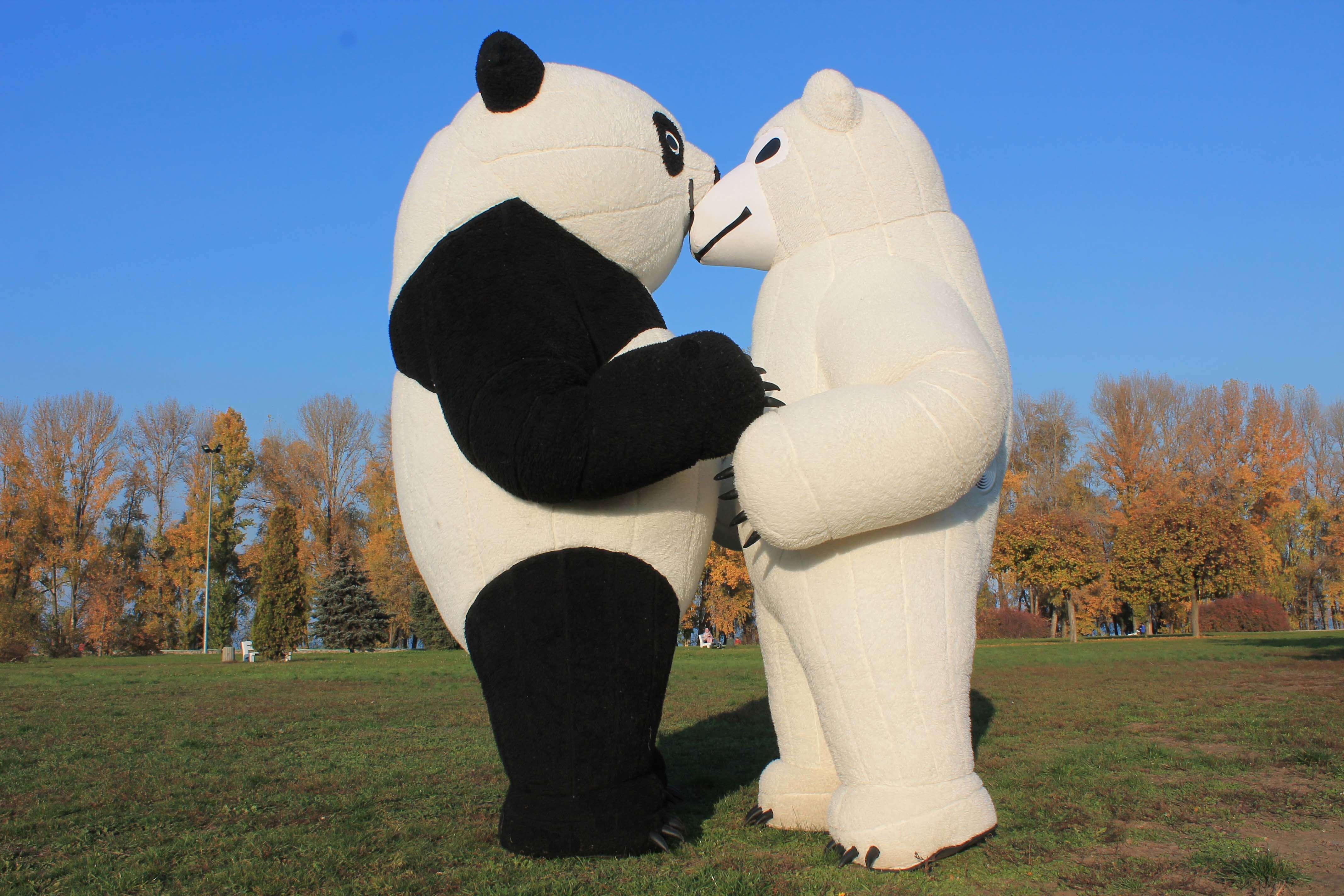 Аренда ростовых кукол пара: Панда и Белый медведь (жених и невеста) в Украине